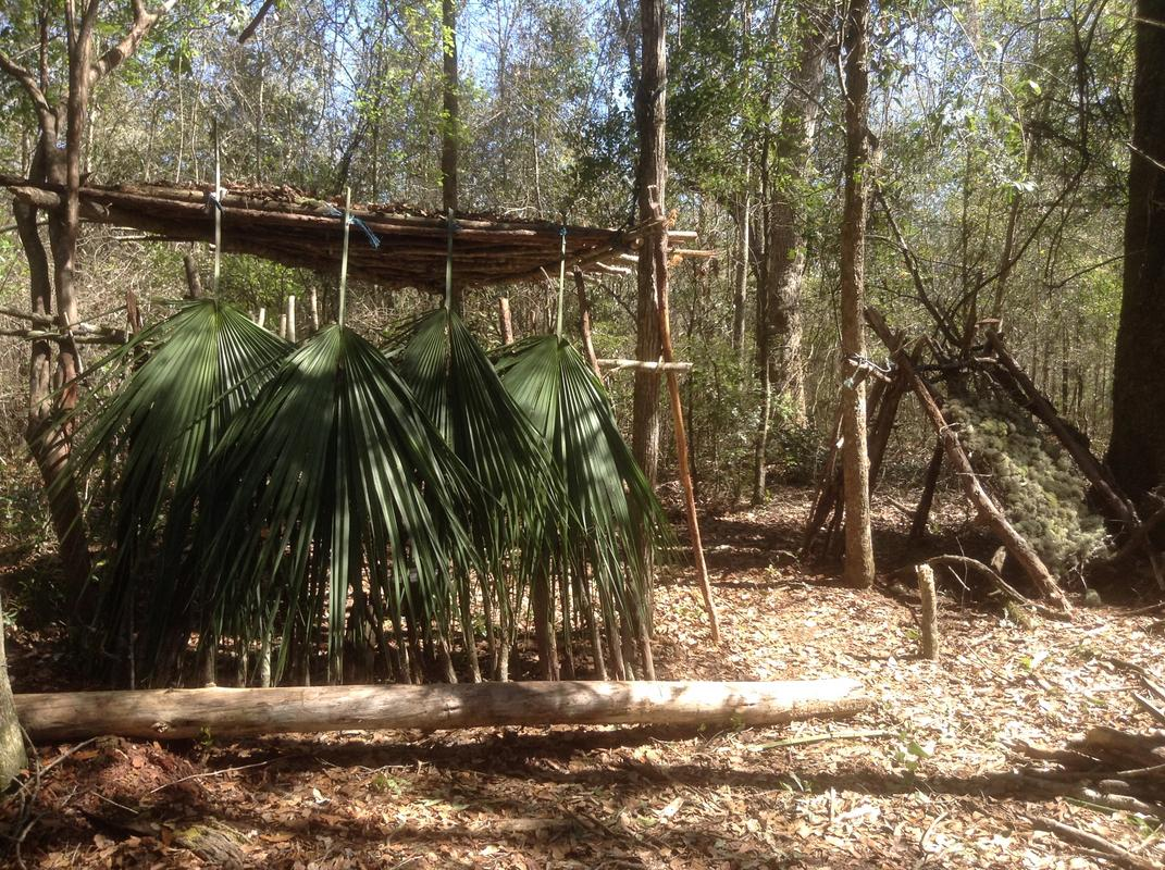 Hut made with huge hanging leaves
