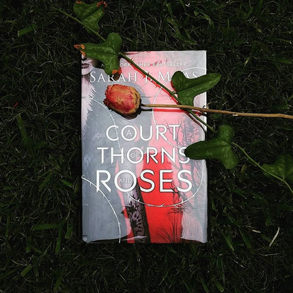 A Court of Thorns and Roses book in grass with rose over it